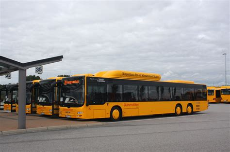 Transport Database and Photogallery - MAN NL313-15 Lion`s
